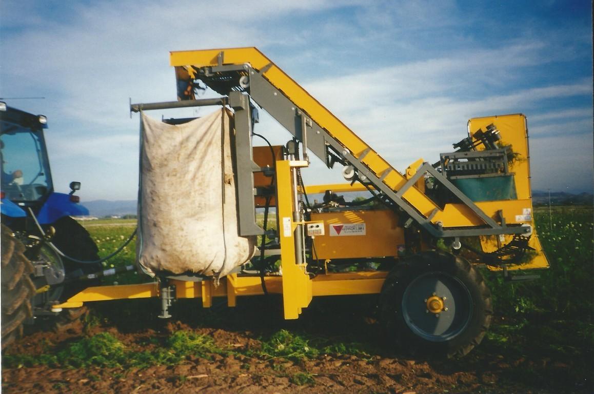 cosechadora de zanajorias hidagri