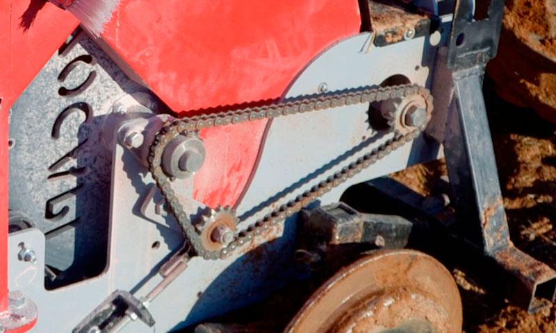 sembradora ajos zocapi 1